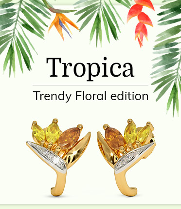 Tropica Collection